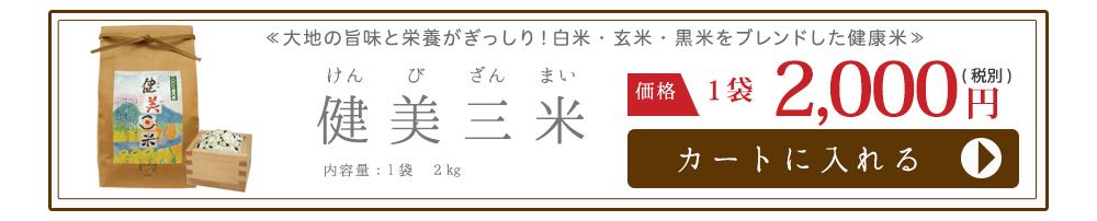 健美三米2kg